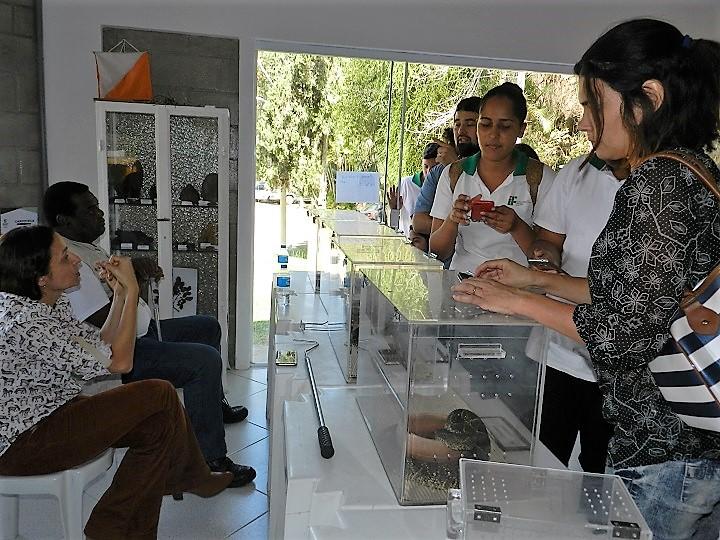 alunos observam animais em caixas plásticas transparentes com supervisão do representante do IVB