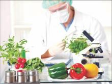 Mestrado Profissional em Ciência e Tecnologia de Alimentos